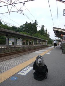 P1080016_2